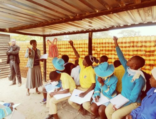 Studio di fattibilità gestione rifiuti solidi urbani in Marondera, Zimbabwe